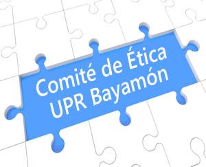 Comité Etica Gubernamental