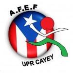logo AFEF