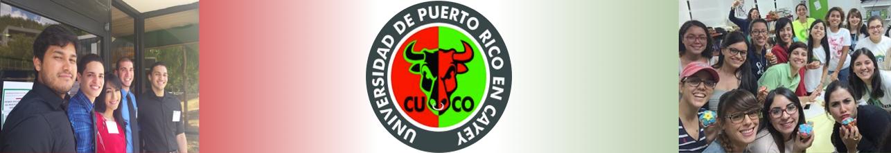 Banner representativa de las Organizaciones Estudiantiles UPR Cayey
