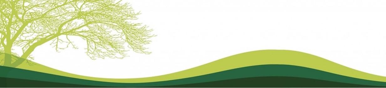 Banner representativo del Field de la UPR Cayey(temporero)