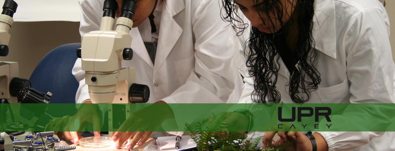 Banner representativo a los laboratorios de naturales en la UPR Cayey