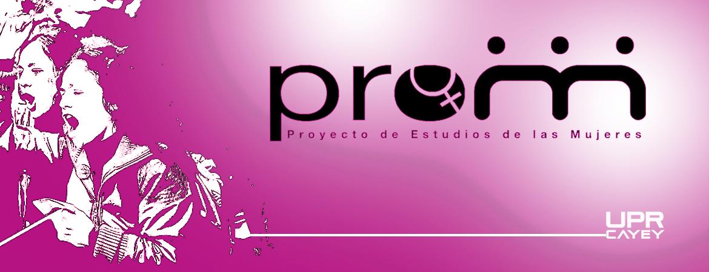 Imagen de Pro Mujeres Banner