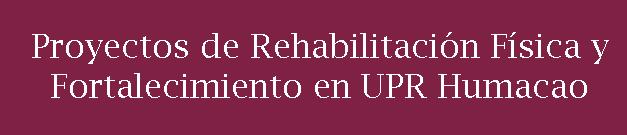 Ícono de Proyecto de Mejoras a UPRH