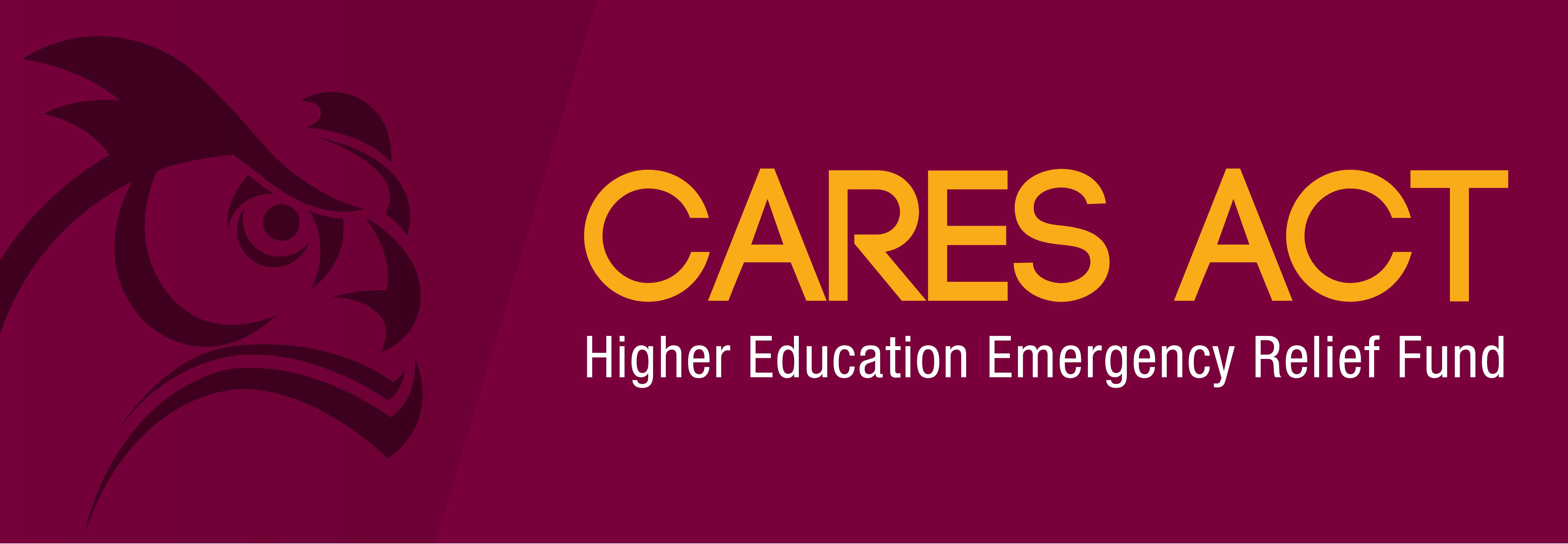 Web banner de CARES