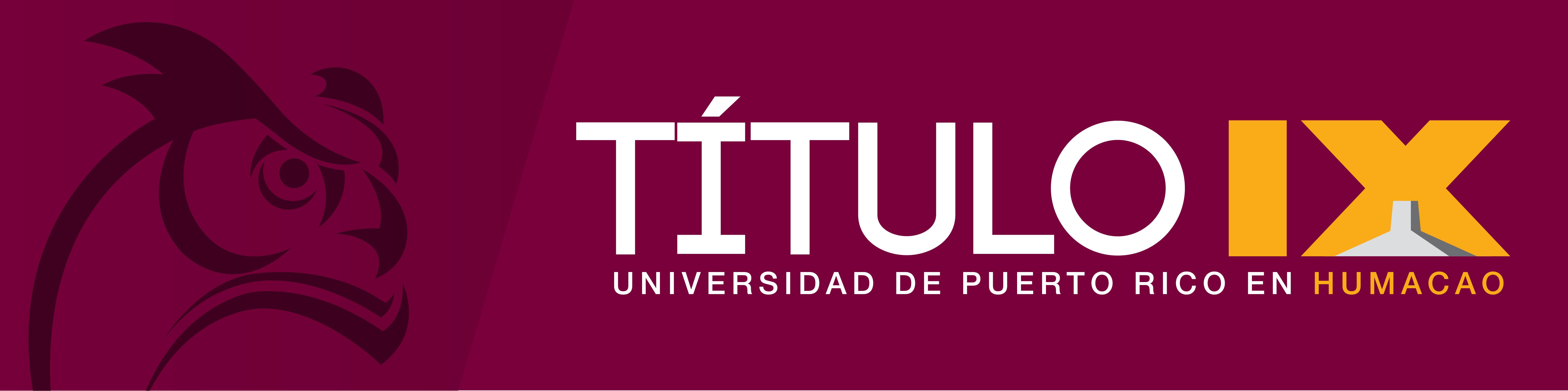 Web Banner Titulo IX