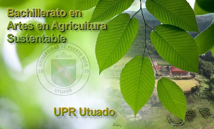 BA_agricultura_sustentable