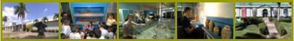 Exteriores e interiores de museos