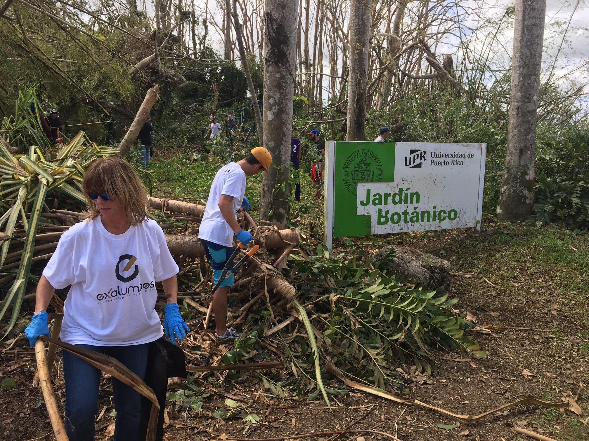 Upr se levanta universidad de puerto rico for Jardin botanico contacto